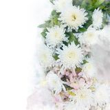 Illustration of blossom chrysanthemum flower. Illustration of blossom white chrysanthemum flower. Artistic floral abstract background. Watercolor painting Stock Photos