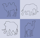 Illustration. Blue background with camels and elephants. Royalty Free Stock Photo
