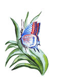 Illustration blue butterfly sitting on the leaves of plants Stock Photo