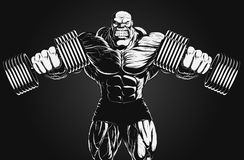 Illustration: bodybuilder with dumbbell. Illustration: a ferocious bodybuilder with dumbbell Royalty Free Stock Image