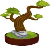 Illustration bonsai Royalty Free Stock Photo