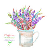 An illustration with a bouquet of the beautiful watercolor bright lupine flowers in a rustic jar Stock Image
