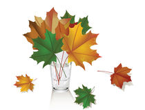 Illustration of a bouquet of leaves. Royalty Free Stock Images