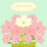 Bouquet of pink flowers card Royalty Free Stock Image