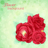Illustration of a bouquet of roses Stock Image