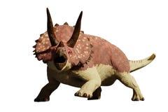 Illustration Brachiosaurus altithorax Dinosauriers 3d lokalisiert auf weißem Hintergrund Stockfoto