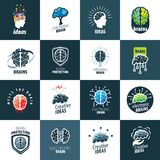 Vector brain logo royalty free illustration