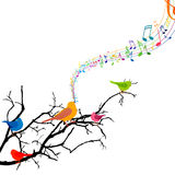Singing Birds Stock Photography