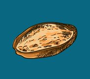 Illustration of bread Royalty Free Stock Images