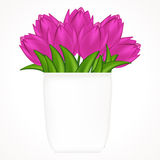 Illustration of bright tulips. Stock Photos