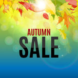 Illustration brillante d'Autumn Leaves Sale Background Vector Images stock