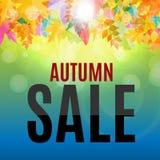 Illustration brillante d'Autumn Leaves Sale Background Vector Photographie stock libre de droits