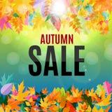 Illustration brillante d'Autumn Leaves Sale Background Vector Photos libres de droits