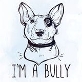 Illustration of Bull Terrier with funny slogan. Royalty Free Stock Image
