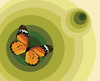 Illustration with a butterfly Stock Photography