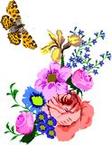Illustration with butterfly and flowers Royalty Free Stock Photography