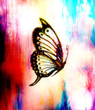 Illustration of a butterfly, mixed medium, abstract color background. Illustration of a butterfly, mixed medium, abstract color background Stock Images