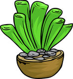 Illustration cactus. On white background Stock Photography
