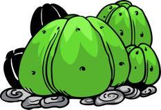 Illustration cactus Royalty Free Stock Photography