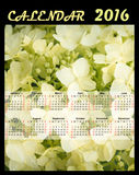 Illustration calendar for 2016 in floral design with flowers. Illustration calendar for 2016 in floral design with white flowers Royalty Free Stock Photo