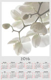 Illustration calendar for 2016 in floral design with white white. Illustration calendar for 2016 in floral design with white branch of pure white orchid Royalty Free Stock Photography