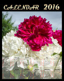 Illustration calendar for 2016 with flowers. Illustration calendar for 2016 in floral design Stock Image