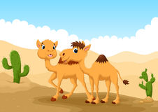 Illustration of camels in desert Royalty Free Stock Images
