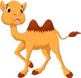 Illustration of camels in desert Stock Image