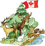 Illustration canadienne de vecteur d'animaux Images stock