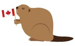 Illustration canadienne de vecteur de couleur de castor Photo stock