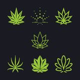 Cannabis as a collection Royalty Free Stock Photo