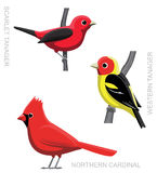 Illustration cardinale 1 de Set Cartoon Vector de Tanager d'oiseau Photographie stock