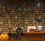 Cartoon black cat in the witch house Vector Illustration