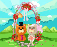 Cats wedding Royalty Free Stock Image