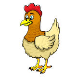 Illustration of a cartoon chicken. Isolated illustration of a cartoon chicken Stock Photography