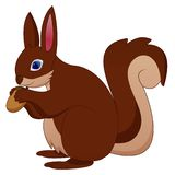 Cartoon funny squirrel holding pine cone vector illustration