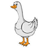 Illustration of a cartoon goose. Isolated illustration of a cartoon goose Royalty Free Stock Image