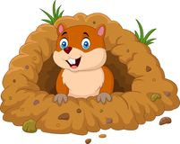 Cartoon groundhog looking out of hole. Illustration of Cartoon groundhog looking out of hole Royalty Free Stock Photos