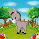Cartoon happy donkey smile in the farm. Illustration of Cartoon happy donkey smile in the farm Stock Photos