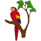 Cartoon macaw on tree branch stock illustration