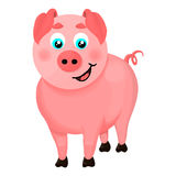 Illustration of a cartoon pig. Isolated illustration of a cartoon pig stock illustration