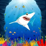 Cartoon shark under the sea. Illustration of Cartoon shark under the sea Royalty Free Stock Photography