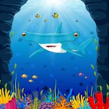 Cartoon shark under the sea. Illustration of Cartoon shark under the sea Royalty Free Stock Images
