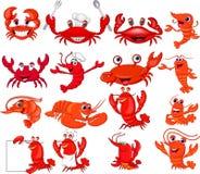 Cartoon shrimp and crab collection set stock illustration