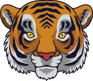 Cartoon Tiger head mascot vector illustration