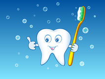 Illustration of cartoon tooth baby. Holding the toothbrush Stock Images