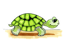 Illustration cartoon turtle Royalty Free Stock Images