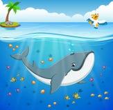 Cartoon whale under the sea. Illustration of Cartoon whale under the sea Stock Images