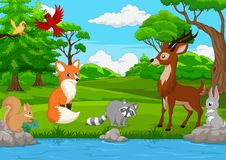 Cartoon wild animal in the jungle. Illustration of Cartoon wild animal in the jungle vector illustration