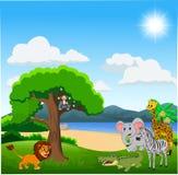 Cartoon wild animals in the jungle vector illustration